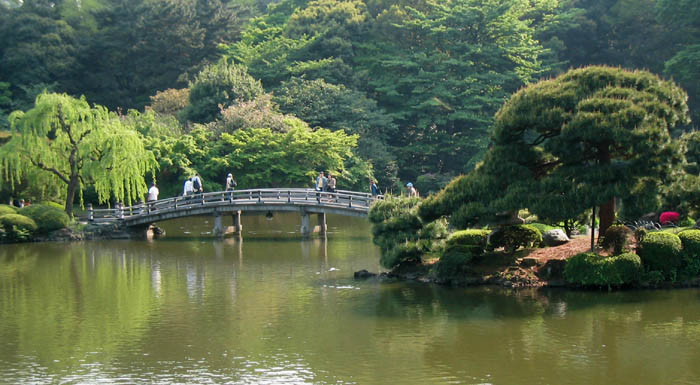 Shinjuku-Gyoen-National-Garden (1)