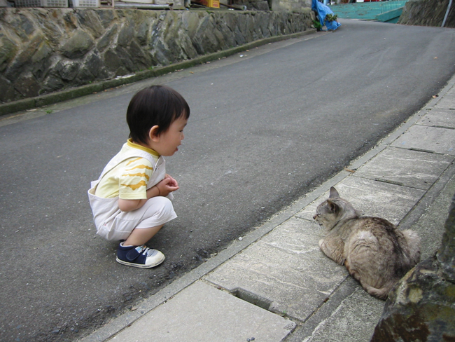 A cat and a kid ~ which one the cutest?